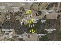 Hobby Farms Or Horses 2 Tracts : Chinquapin : Duplin County : North Carolina