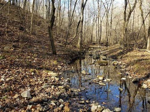 120 Acres Timber, Year Round Sprin : Dora : Douglas County : Missouri