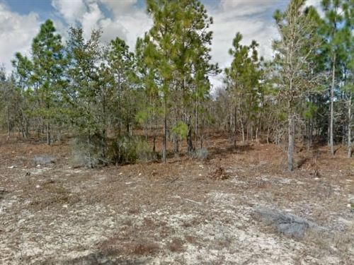 Putnam County, Fl $70,000 Neg : Interlachen : Putnam County : Florida
