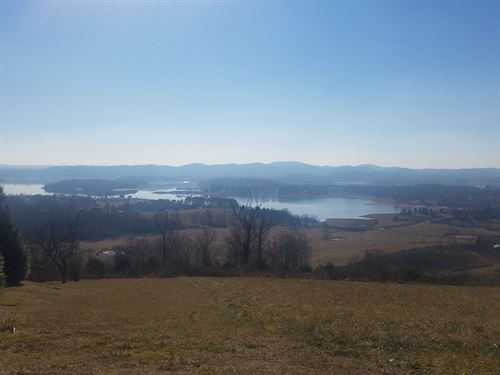 1/2 Acre Cleared Cherokee Lake View : Bean Station : Grainger County : Tennessee