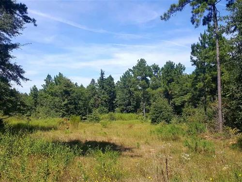 Mill Creek Tract, Bienville Parish : Bienville : Louisiana