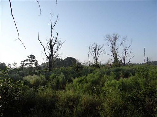 Crossing Tract, Bienville Parish : Gibsland : Bienville Parish : Louisiana