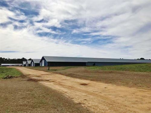 4 Broiler Houses For Sale, Mount Ol : Mount Olive : Covington County : Mississippi