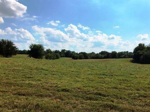 Mississippi Acreage : Starkville : Oktibbeha County : Mississippi