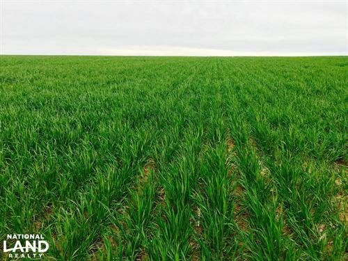 Crop Land For Sale - Cheyenne Count : Arapahoe : Cheyenne County : Colorado