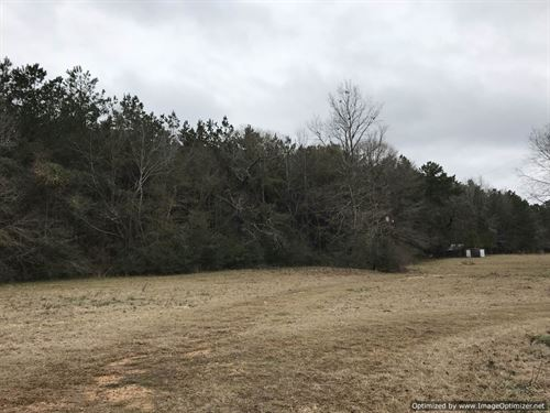 Timber Investment & Hunting Tract : Brookhaven : Lincoln County : Mississippi