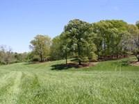 48+/- Acres W/ Ponds & Homesites : Bowdon : Carroll County : Georgia
