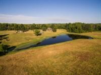 Bradford Farm : Burlington : Caswell County : North Carolina