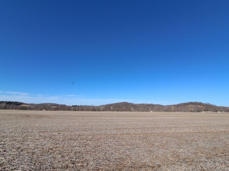 Cr 254 - 49 Acres : West Lafayette : Coshocton County : Ohio