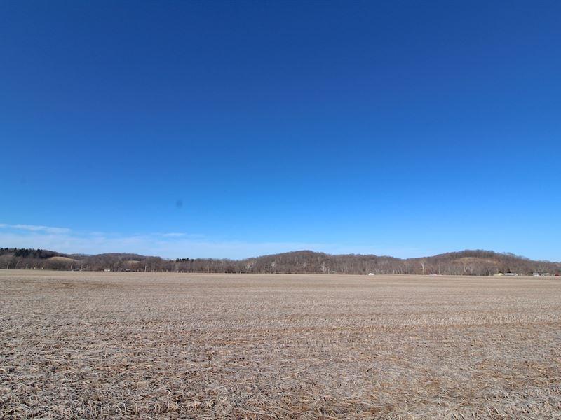 Cr 254 - 49 Acres : West Lafayette : Coshocton County : Ohio
