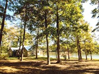 White Oak Bluff : Waynesboro : Burke County : Georgia