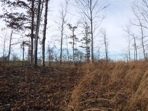 11.46Ac W/ Mtn Views, No Restrict : Celina : Clay County : Tennessee