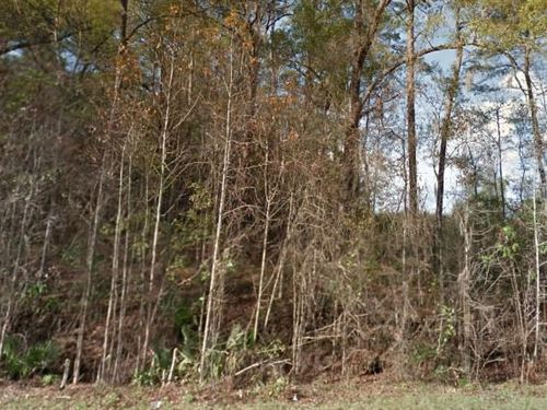 Gadsden County, Fl $50,000 Neg : Quincy : Gadsden County : Florida