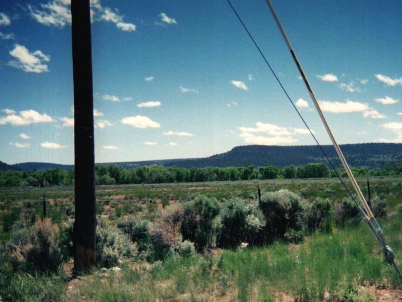 Majestic Land In Colorado Mountains : Antonito : Conejos County : Colorado
