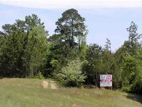 175 +/- Acre Transitional Property : Hattiesburg : Forrest County : Mississippi