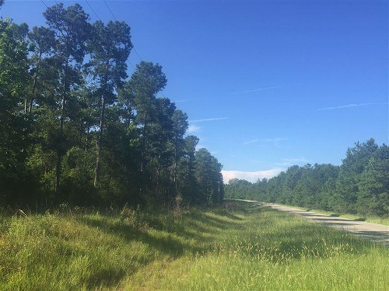 48 Acres Hunting Land With Homesite : Glenwood : Crenshaw County : Alabama