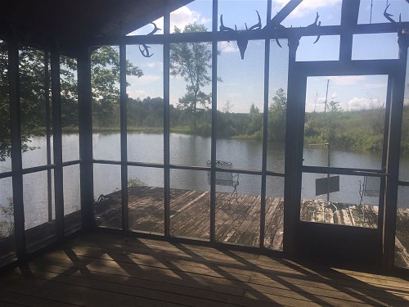 385 Acres Timberland Near Troy : Troy : Pike County : Alabama