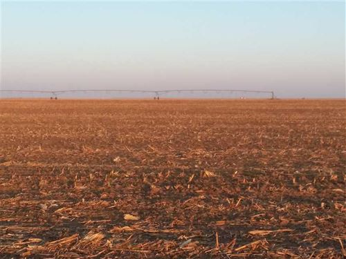 155.75 Acres, Kismet, Seward Co : Kismet : Seward County : Kansas