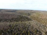 1400 Acre Development/Recreational : Hollister : Taney County : Missouri