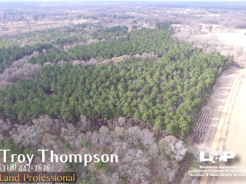 39 Acres Effie Avoyelles Parish : Effie : Avoyelles Parish : Louisiana