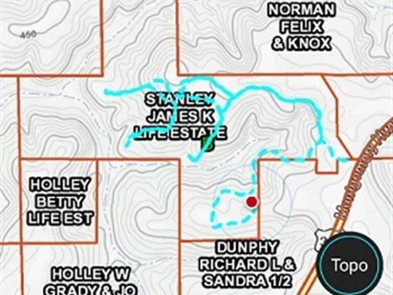 240 Ac Hunting Land In Crenshaw Co : Luverne : Crenshaw County : Alabama