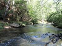 Yellowdirt Creek Tract : Carrollton : Carroll County : Georgia