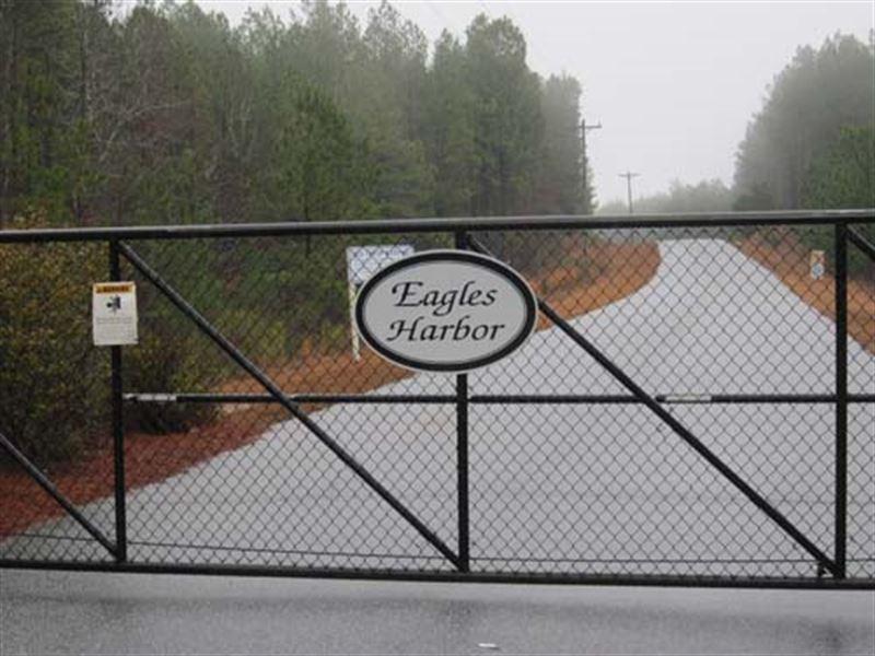 Multi-Seller Auction : Hodges : Greenwood County : South Carolina
