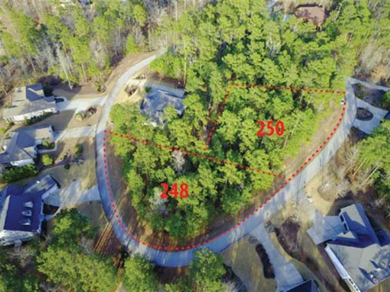 Multi-Seller Auction : McCormick : McCormick County : South Carolina