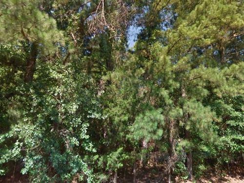 Marion County, Tx $12,000 Neg : Avinger : Marion County : Texas