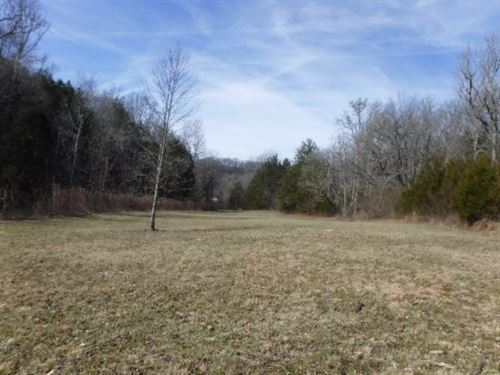 14.69 Ac With Creek, Building Site : Silver Point : Dekalb County : Tennessee