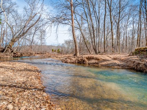 603 Acre Sportmans Dream : Lobelville : Perry County : Tennessee