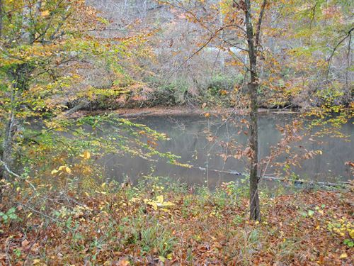 Tallapoosa River Lot 7 : Muscadine : Cleburne County : Alabama