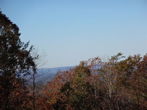80.95 Acres Woodall Mountain Ro : Pickens : South Carolina