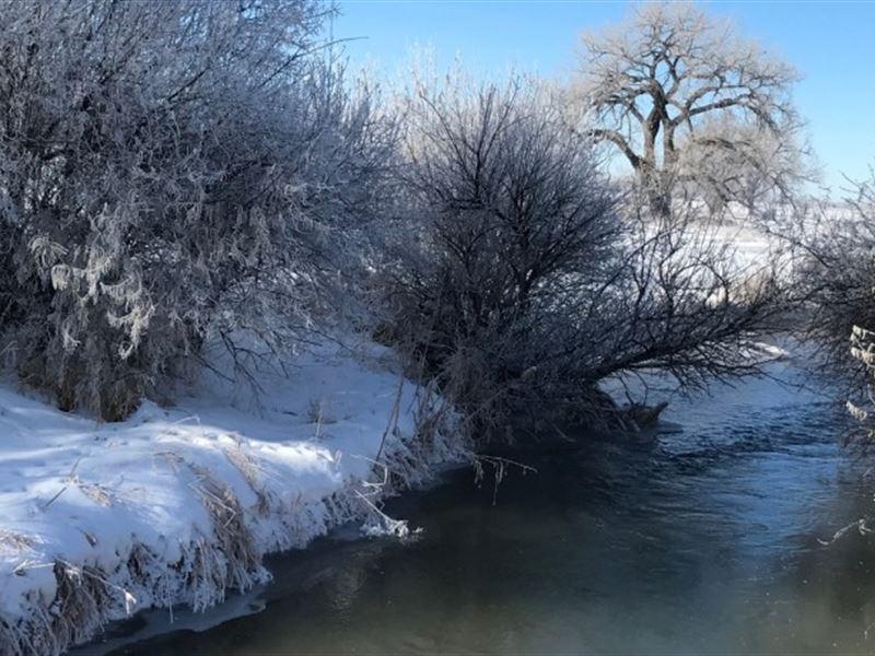 Morrill County Waterfowl : Bayard : Morrill County : Nebraska