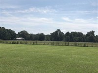 215 Acres Pasture And Timberland : Rison : Cleveland County : Arkansas