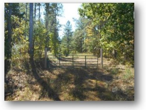 415 Acres In Carroll/ Montgomery Co : Carrollton : Carroll County : Mississippi