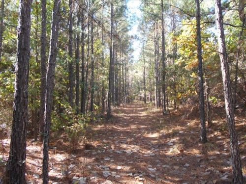 445 Acres In Carroll/ Montgomery Co : Carrollton : Carroll County : Mississippi