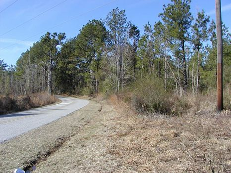 60 +/- Acres Transitional Property : Hattiesburg : Forrest County : Mississippi