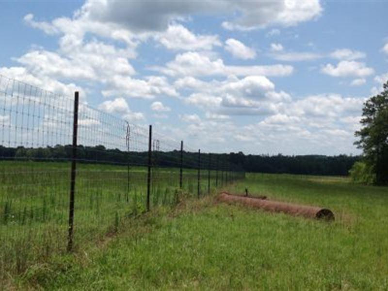 80 Ac Hunting Land W/ Cabin Pike : Brundidge : Pike County : Alabama
