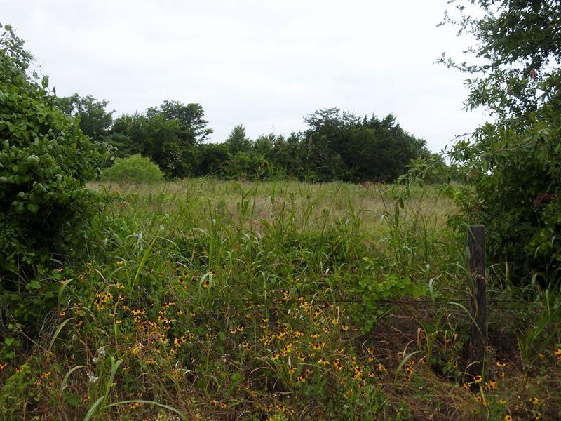 5.52 Acres, Fm 485, Branchville : Branchville : Milam County : Texas