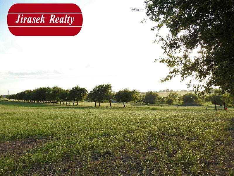 12.223 Ac, Franklin Rd, Troy : Troy : Bell County : Texas
