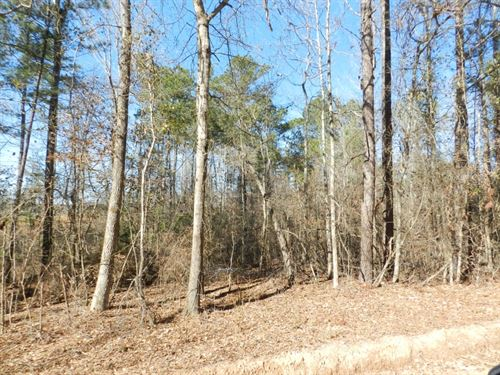 Jones County 24 Ac Lot : Haddock : Jones County : Georgia