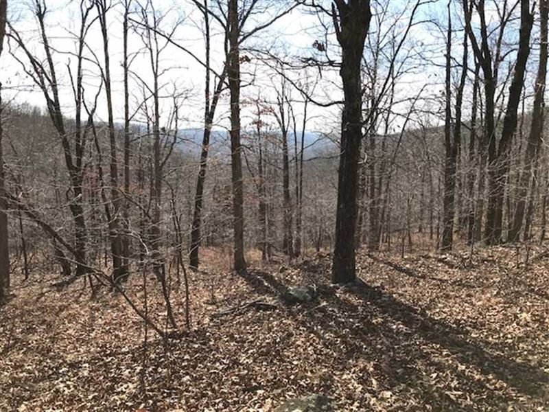 142 Acres in Combs, AR : Combs : Madison County : Arkansas