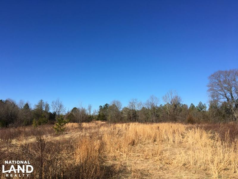 Secluded Homesite With Creek : Inman : Spartanburg County : South Carolina