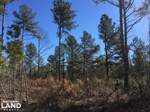 Calvery Road Level Homesite : Inman : Spartanburg County : South Carolina
