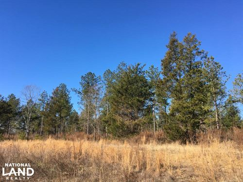 Country Homesite With Creek : Inman : Spartanburg County : South Carolina