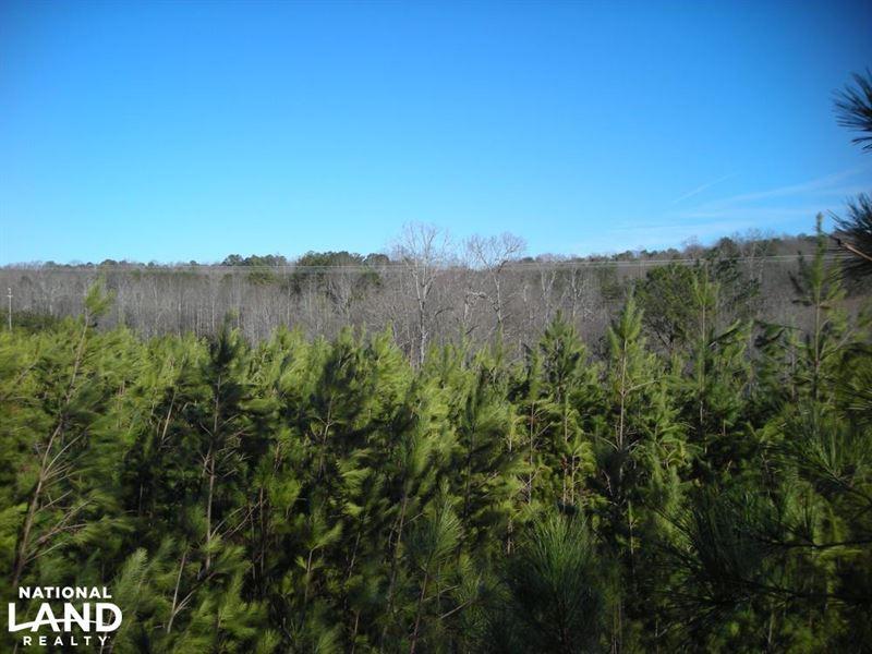 Hwy 120 Recreational, Timber, Hunti : Buchanan : Haralson County : Georgia