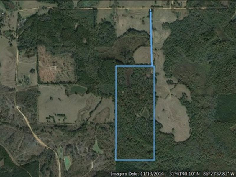 100 Acre Sportsman Paradise : Luverne : Crenshaw County : Alabama