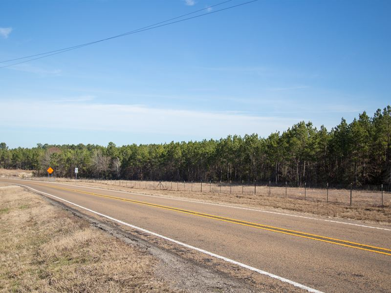 11.4 Ac Tract 3 Dawson Hill : Huntsville : Walker County : Texas