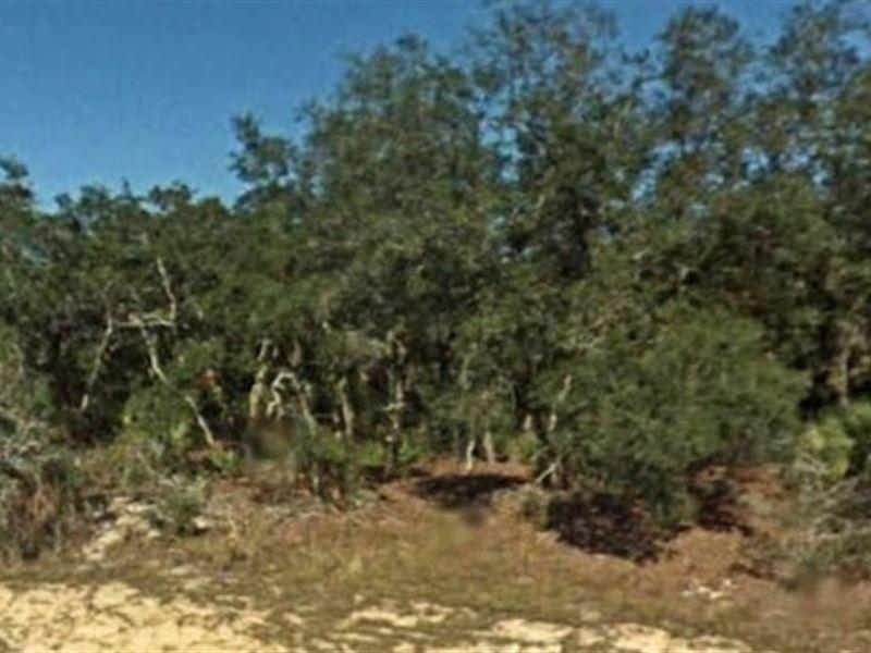 Highlands County, Fl $47,500 Neg : Avon Park : Highlands County : Florida